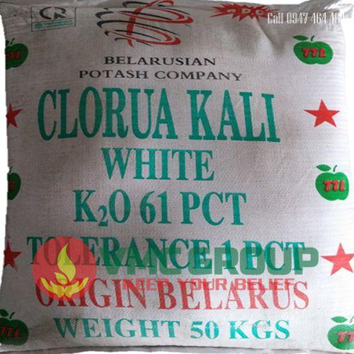 ban Kali Clorua – KCL Potassium Chloride (MOP)