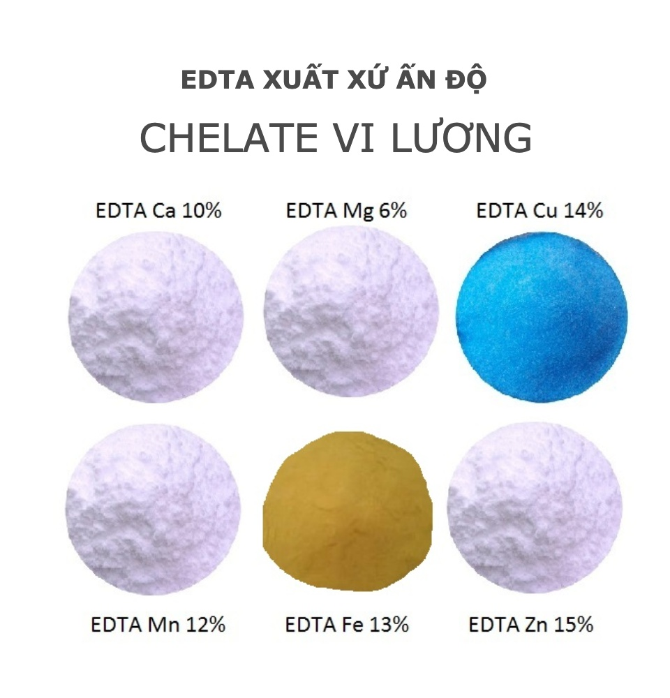 EDTA Mg 6% - EDTA MAGNESIUM - CHELATE MAGIE - ẤN ĐỘ